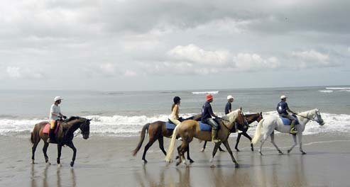 horse riding, bali horse riding, canggu beach