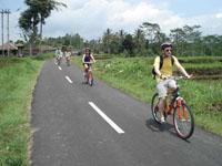 downhill cycling tour, bob