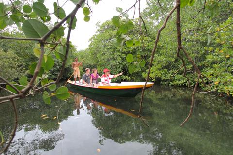 Mangroove Tour, Nusa Lembongan Island, Bali