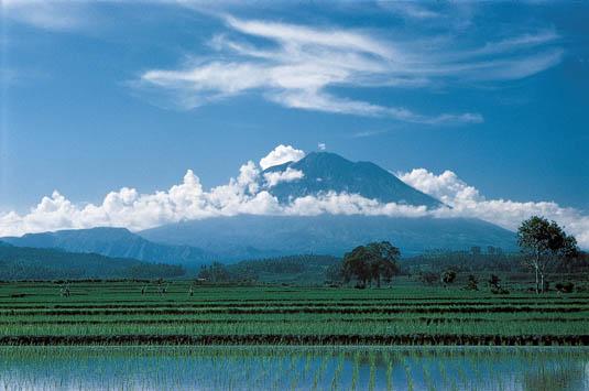 Mount Agung View