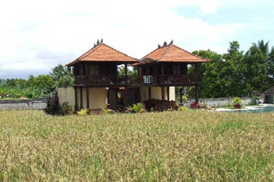 rice field view, room view, atres villa