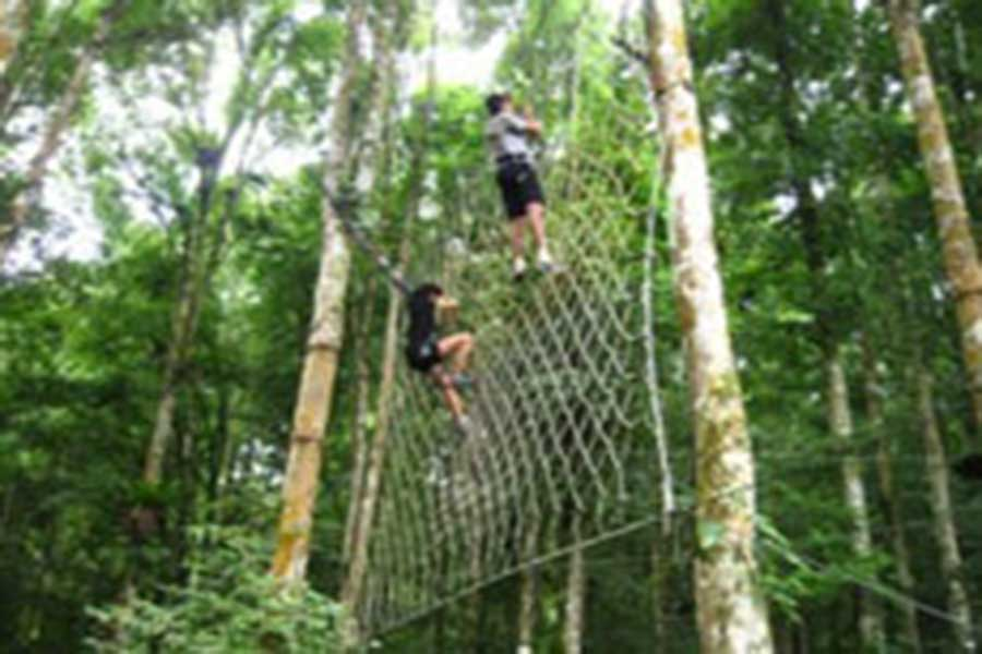 activities at bedugul botanical garden