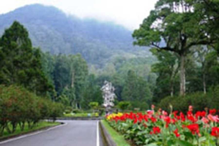 bedugul botanical garden view
