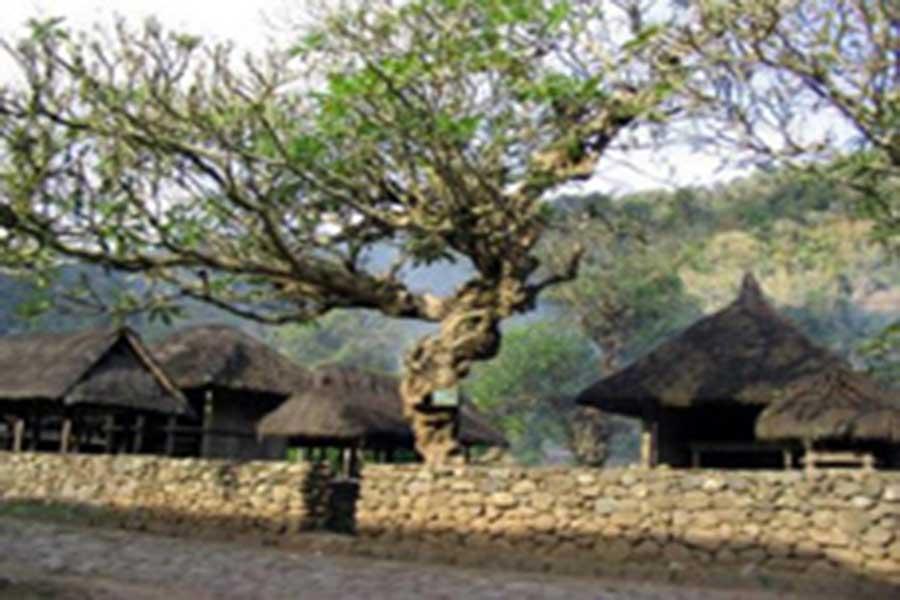 bali original village, bali age