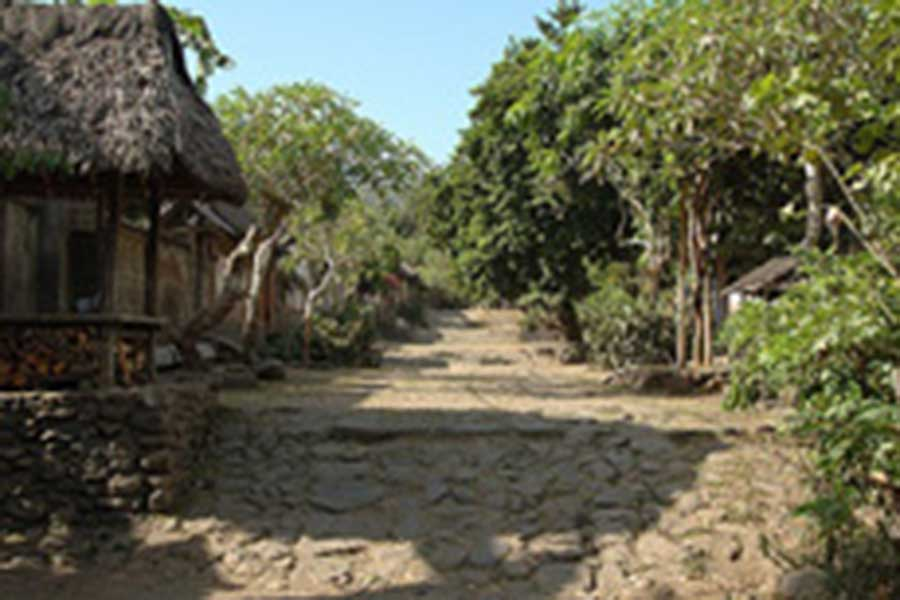 traditional house at tenganan village