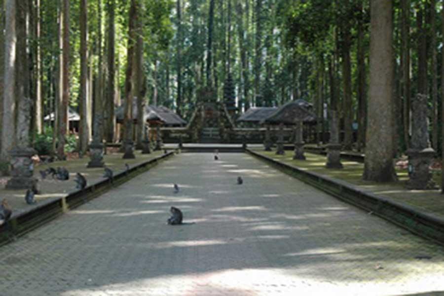 alas kedaton, bali temple