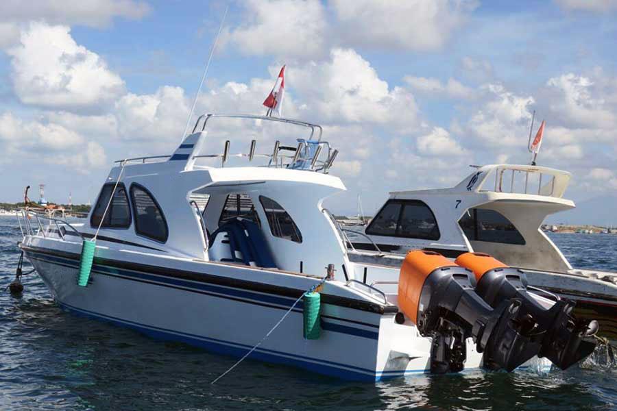 bali dolphins, fishing boat view, nusa dua fishing boat charter