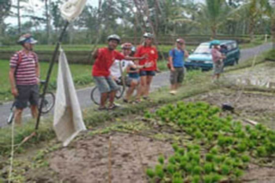 balinese farmers, cycling tour, bali cycling, tour adventure