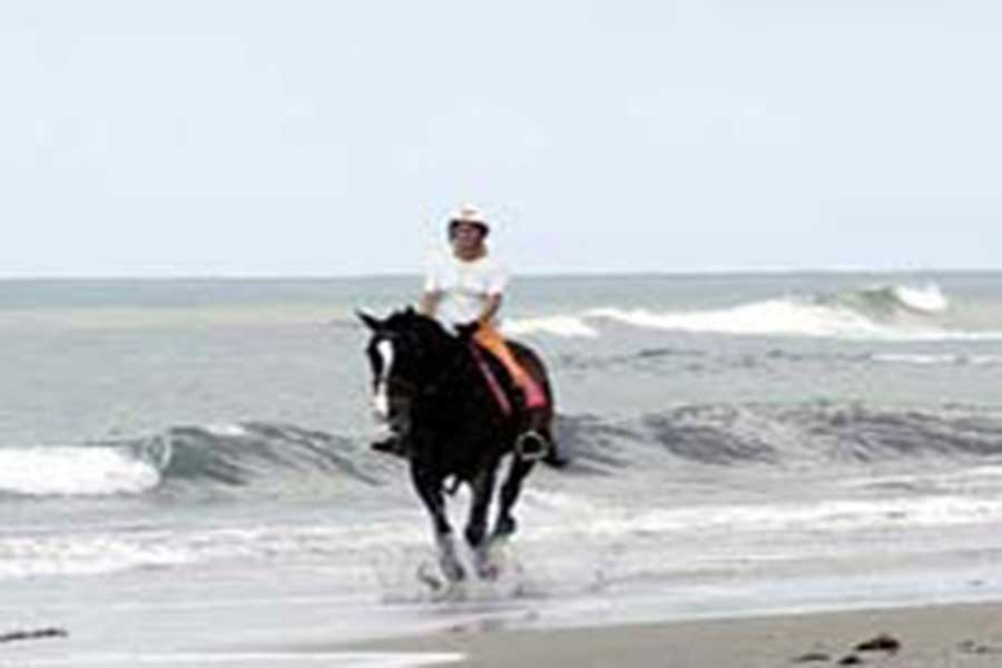 canggu beach horse riding bali