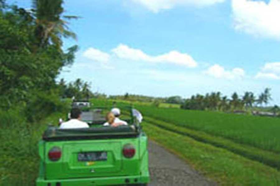 countryside tours, bali, vw safari