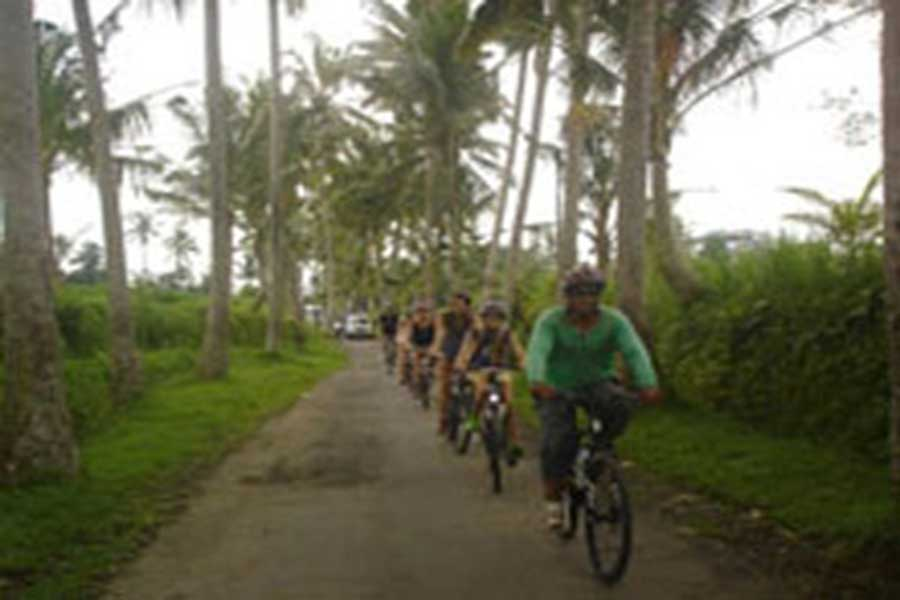 bali bike tour, cbike tour bali, cycle trips, cycle holidays, kintamani