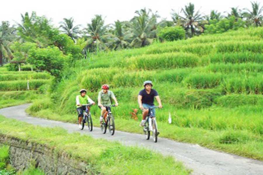 sobek cycling, sobek batur cycling, cycling trip