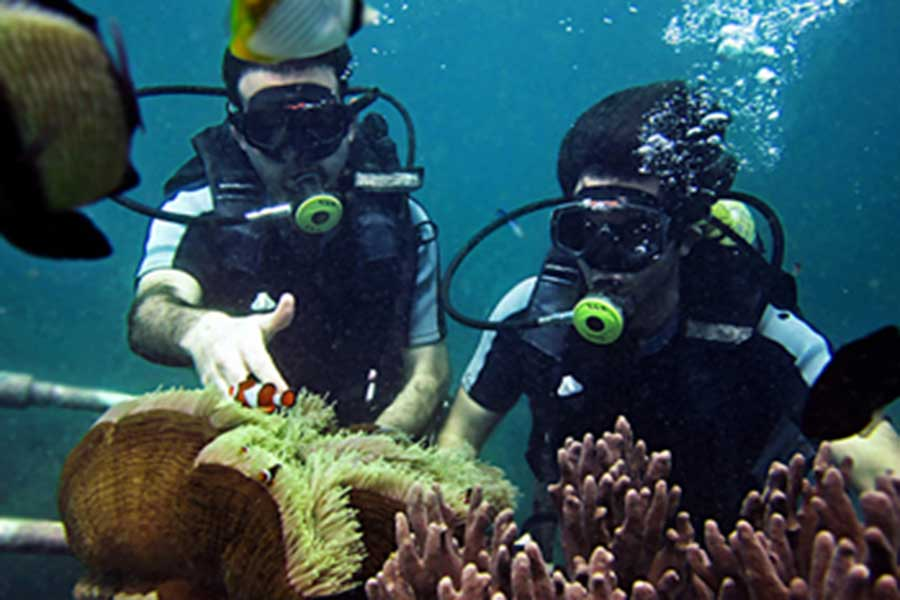 diving, nusa dua, tanjung benoa