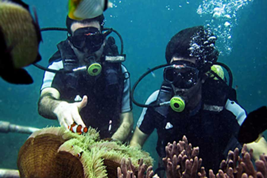 diving school, dive course, padi international