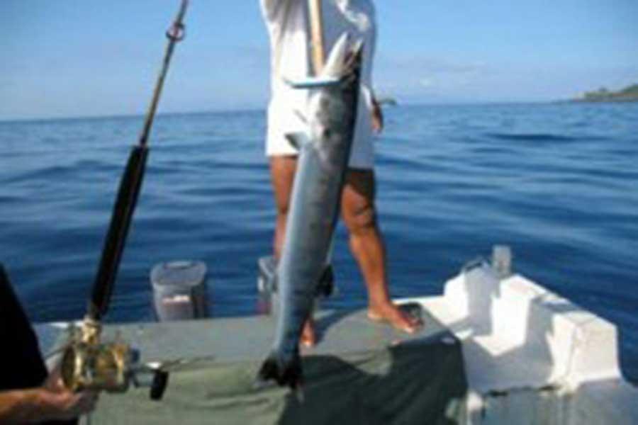 Bali Fishing, fishing in Bali, bali fishing trips
