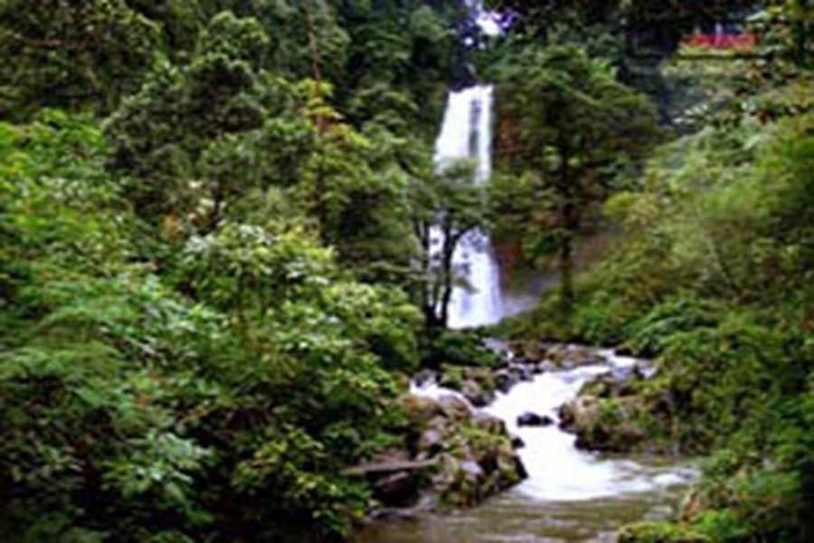 gitgit waterfall, sightseeing bali, visiting bali