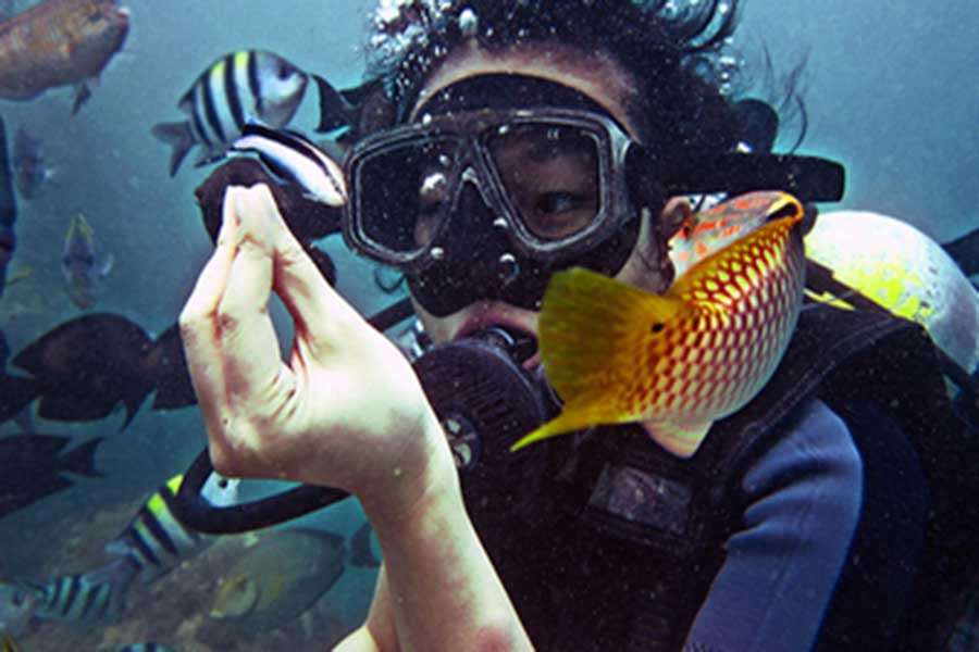 diving skill, diving bali, diving course