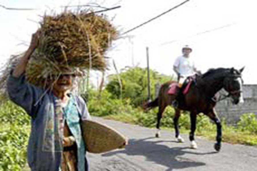 local farmer, bali horse riding, horse riding