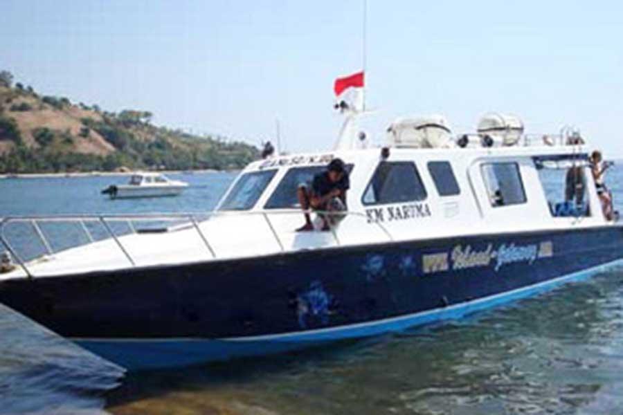 narooma fast boat view