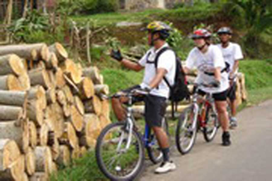 cycling tours, jatiluwih village, bali cycling