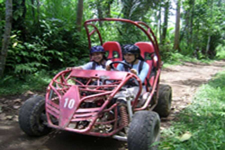 bali buggy, visiting bali, about bali, bali to do