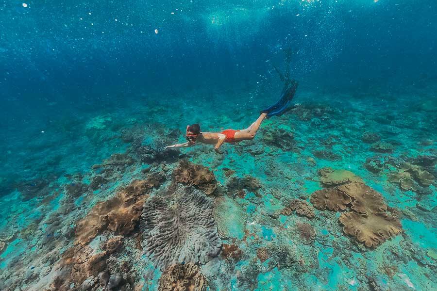 snorkeling, lembongan, clear water