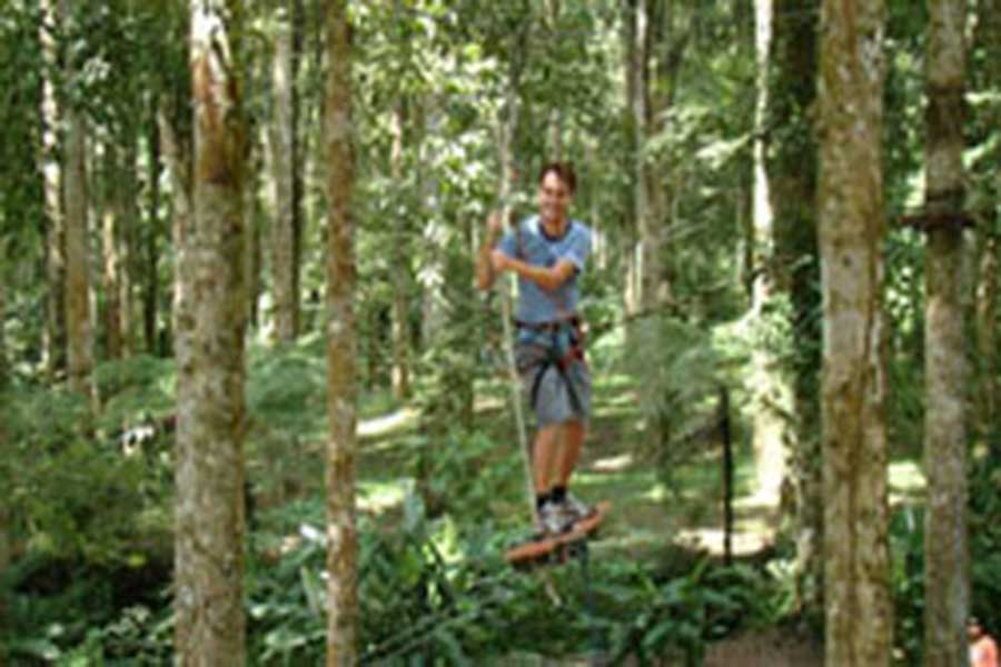 treetop adventure park bali, fun activities