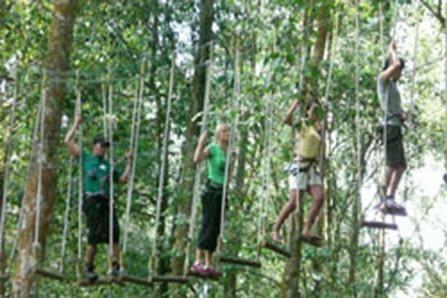 treetop adventure park bali, activities