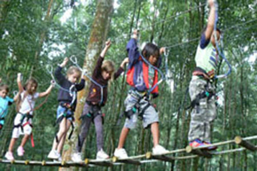 treetop adventure park bali, suspension bridge
