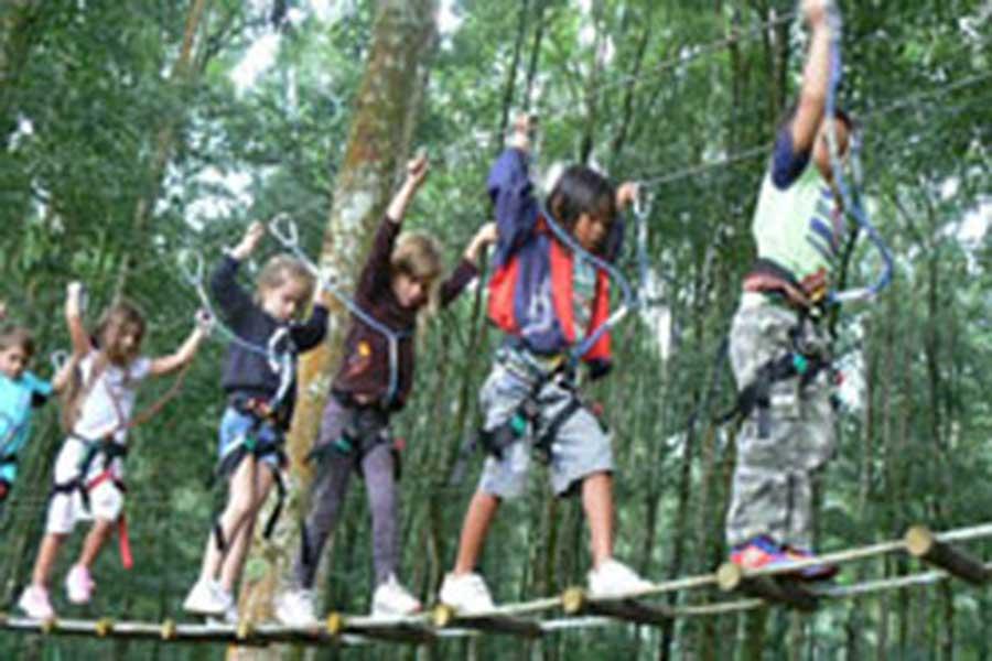 treetop adventure park bali, suspension bridge
