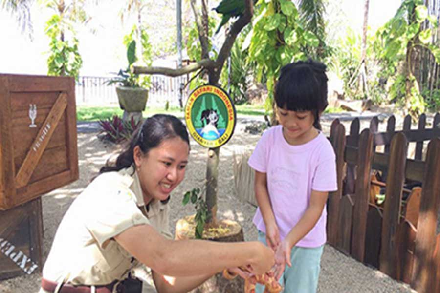 animal show, education, bali safari