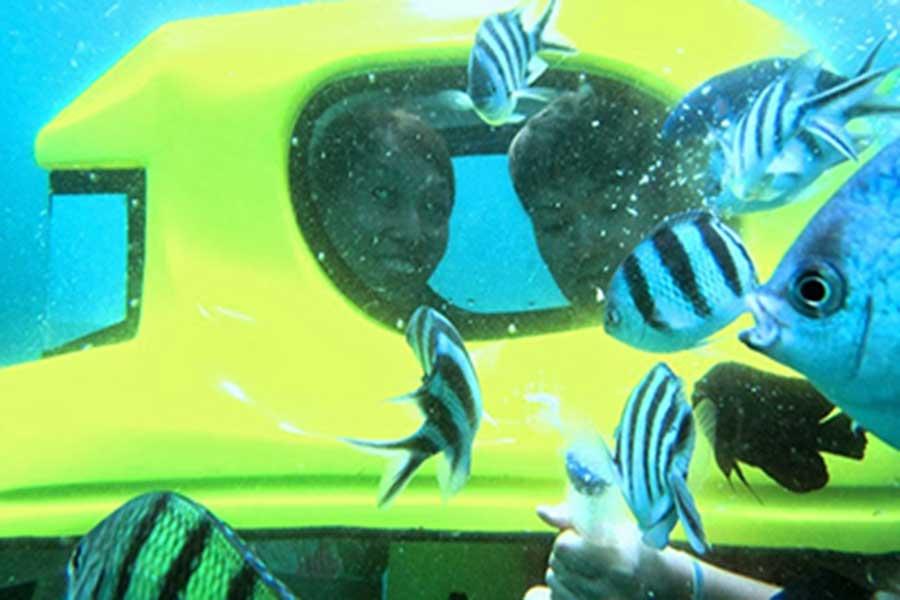 safe water sports, aqua star, underwater scooter