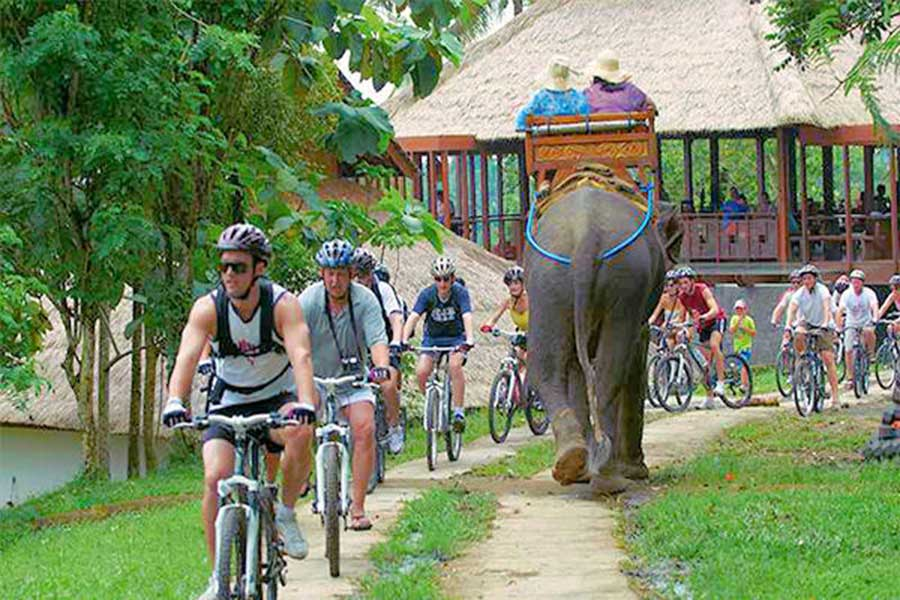 bali elephant camp, carangsari village