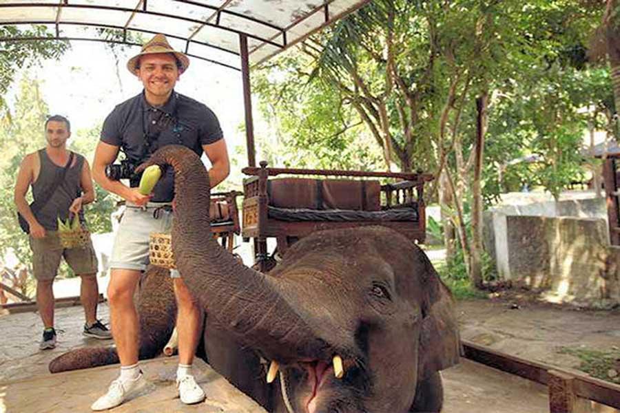 bali elephant camp, elephant education bali