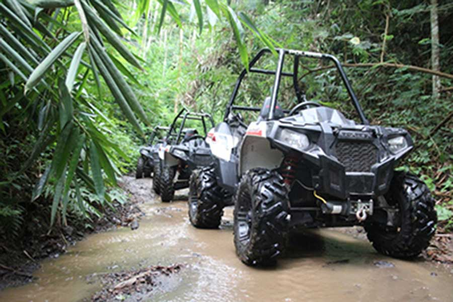buggy tour, off-road buggy tour