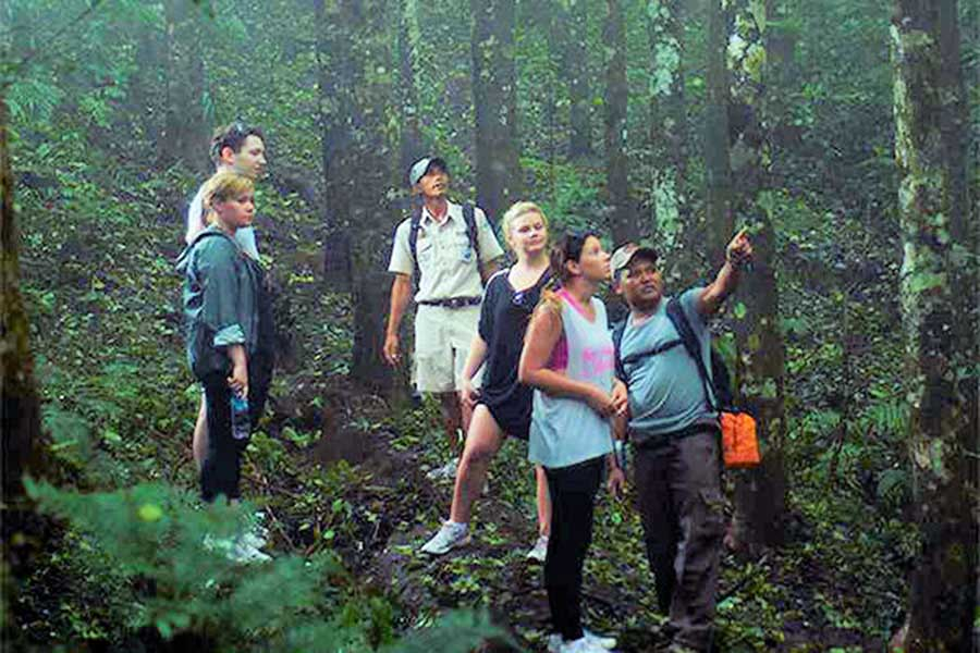ecology education, bali trekking tour