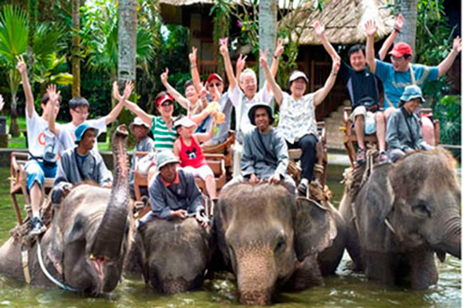 vacation package bali, bali tour package, elephant ride