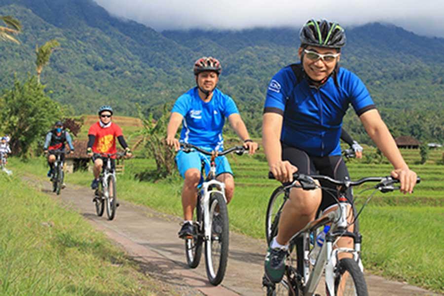 jatiluwih, bike tour, bali moon bike