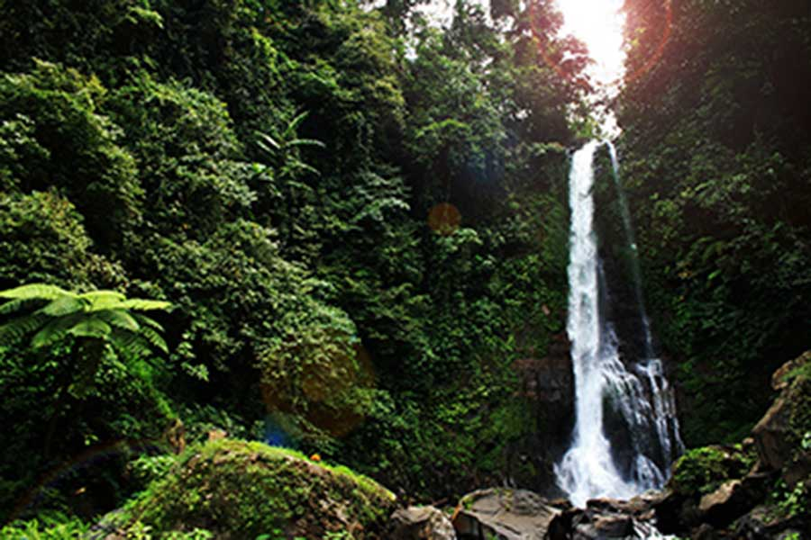 vacation package bali, bali tour package, gitgit waterfall