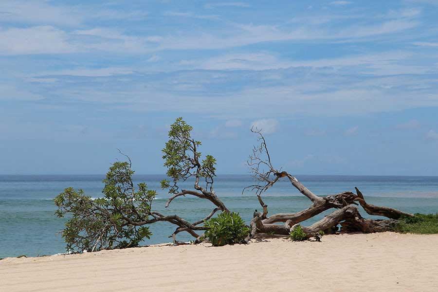 hilton beach view, nusa dua, hilton bali resort
