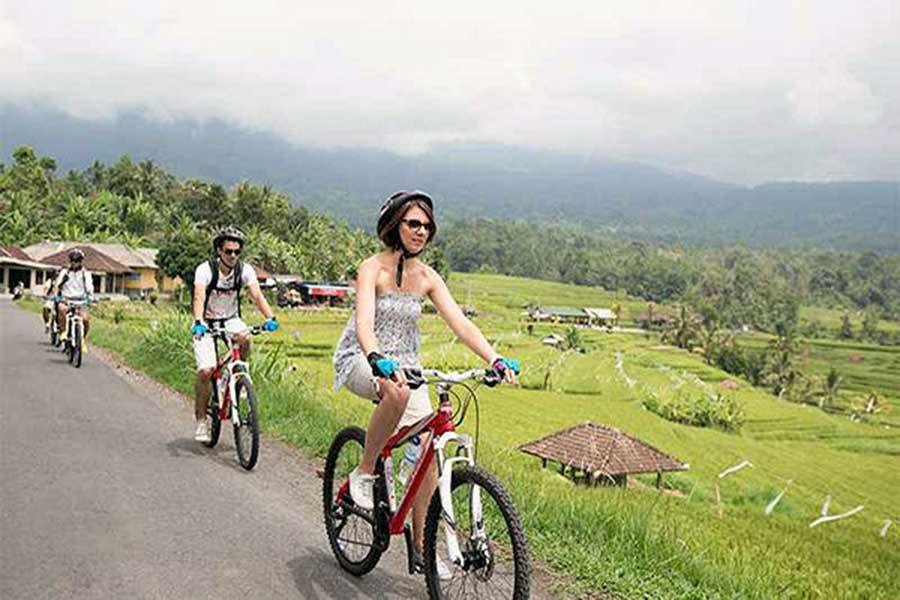 jatiluwih, rice paddy cycling