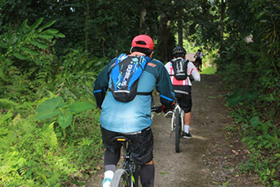 jatiluwih, tour track, bali moon bike