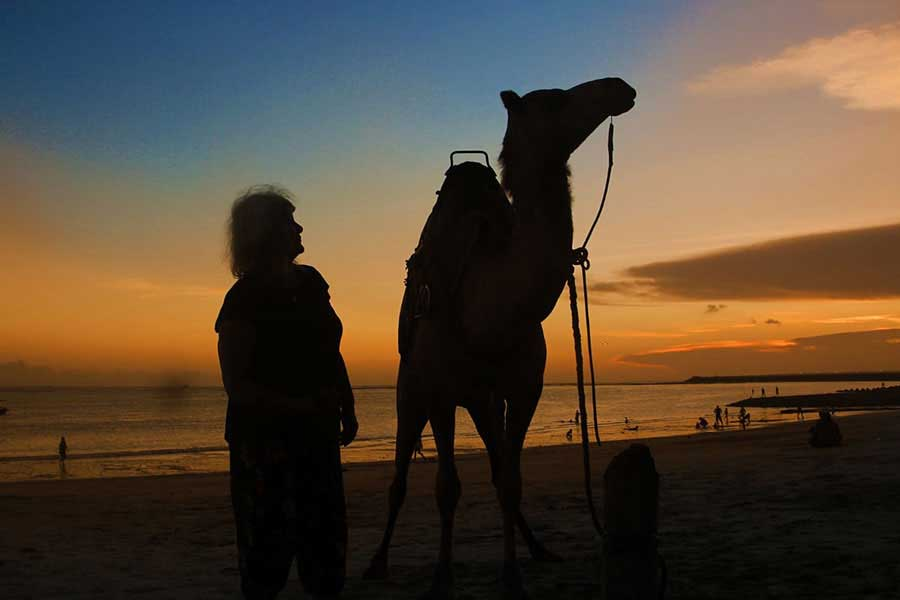 kelan beach sunset, camel adventure bali