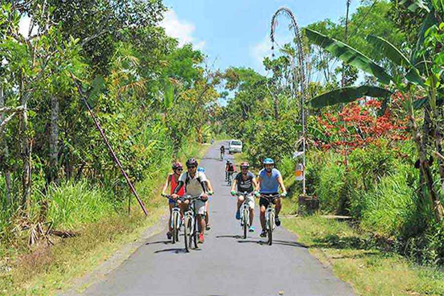 kintamani mountain cycling tour
