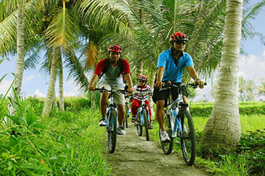 kintamani to ubud cycling tour