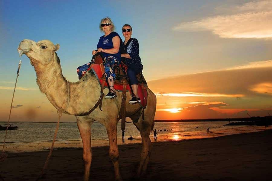 ride camel in bali, kelan beach camel safari