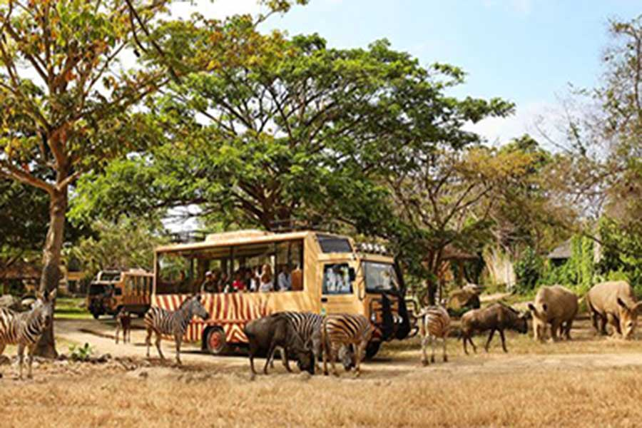 safari journey, jungle hopper, bali safari