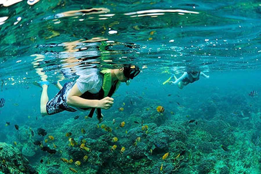 manta rays, snorkeling bali, ocean rafting cruise