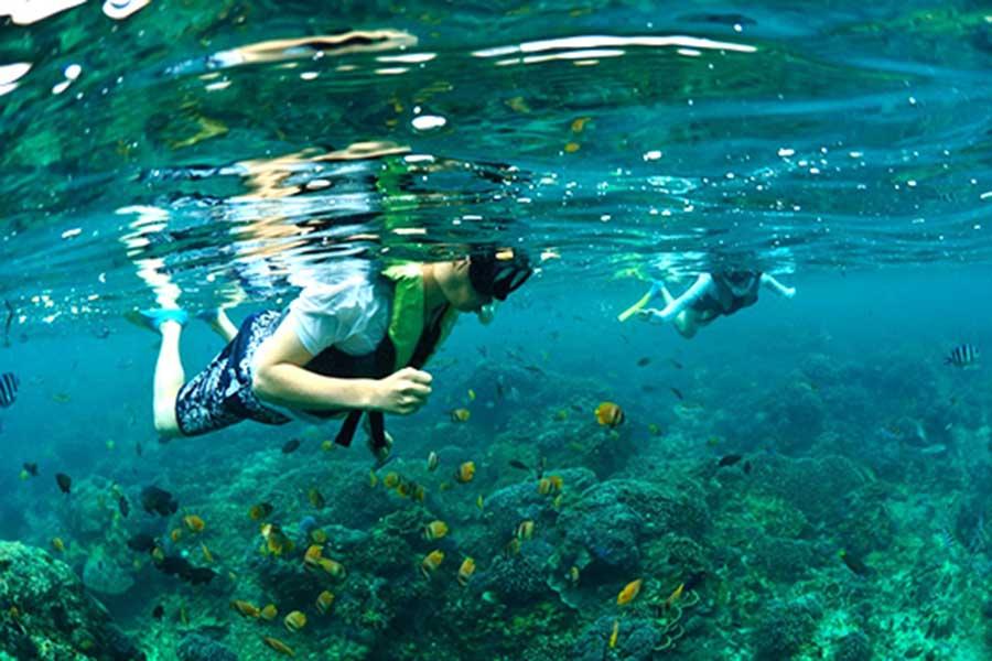 best coral reef, crystal bay nusa penida island