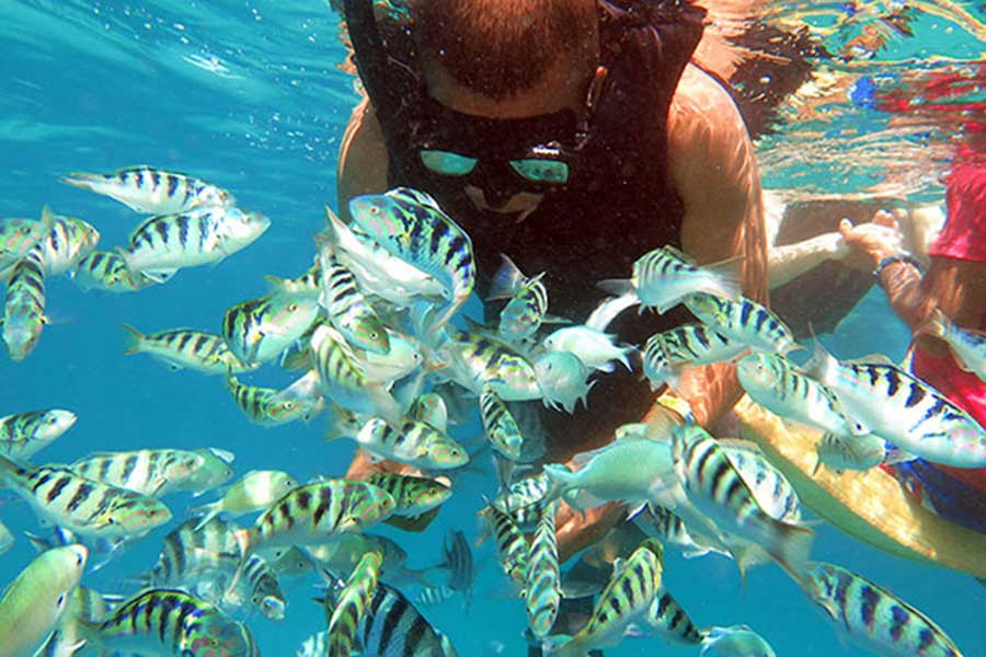 snorkeling lembongan, bounty day cruise